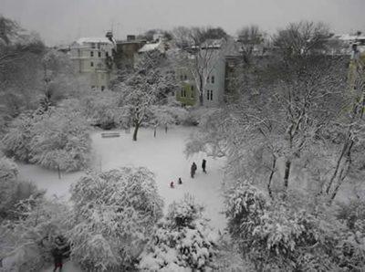 snowinrosmeadgarden_002